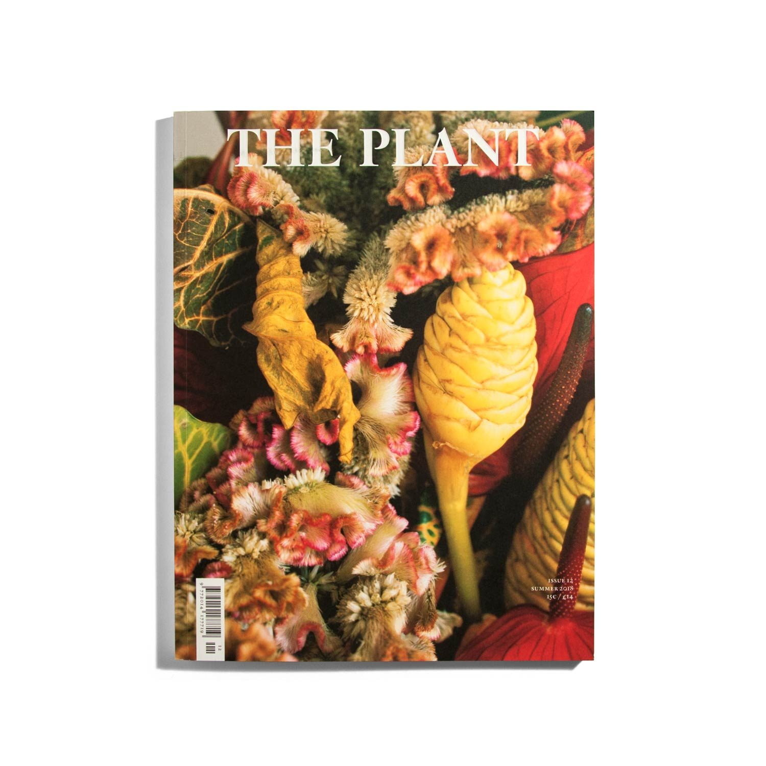 The plant #12 2018