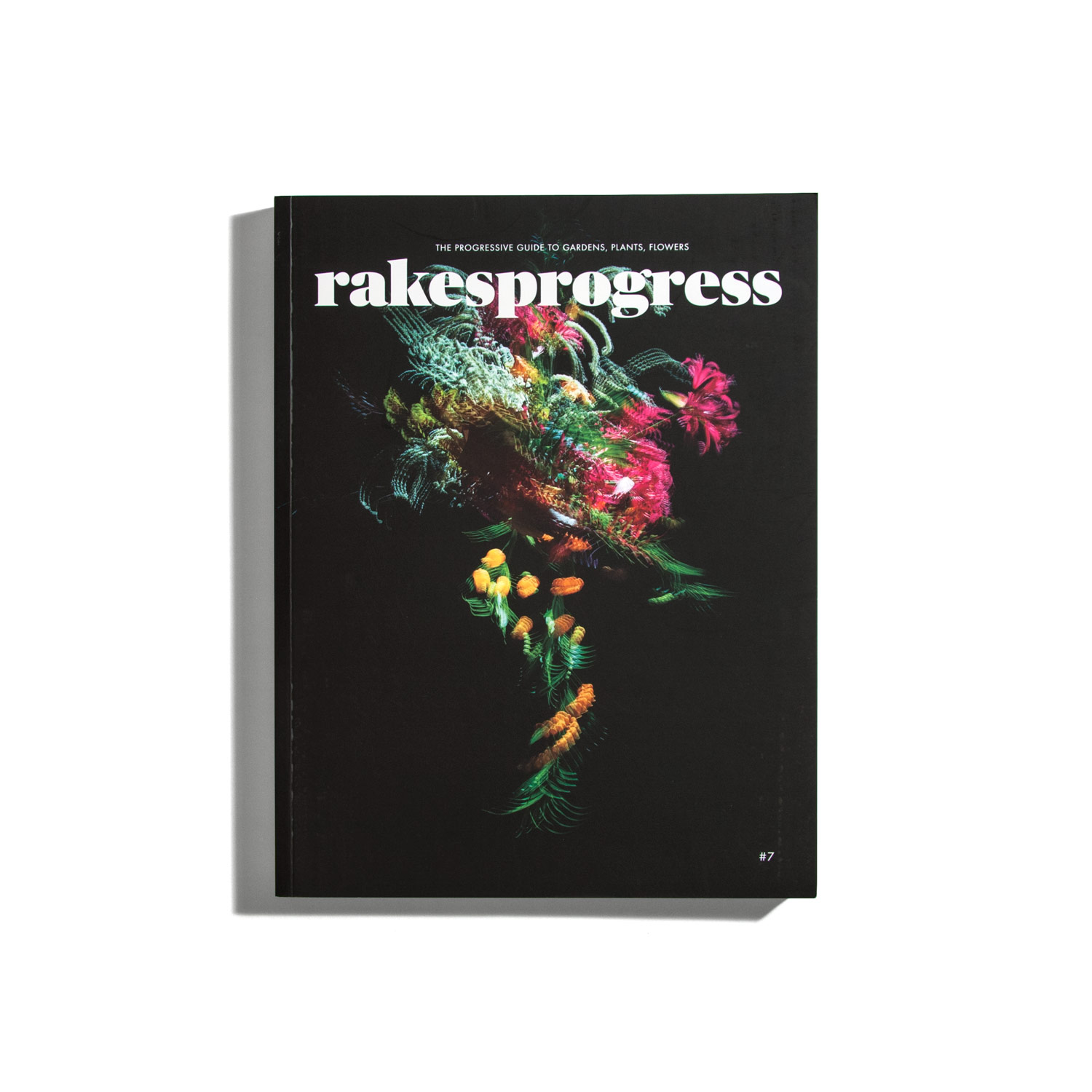Rakesprogress #7 2018