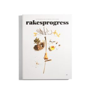 Rakesprogress #8 2018