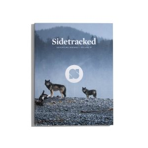 Sidetracked #13 2018