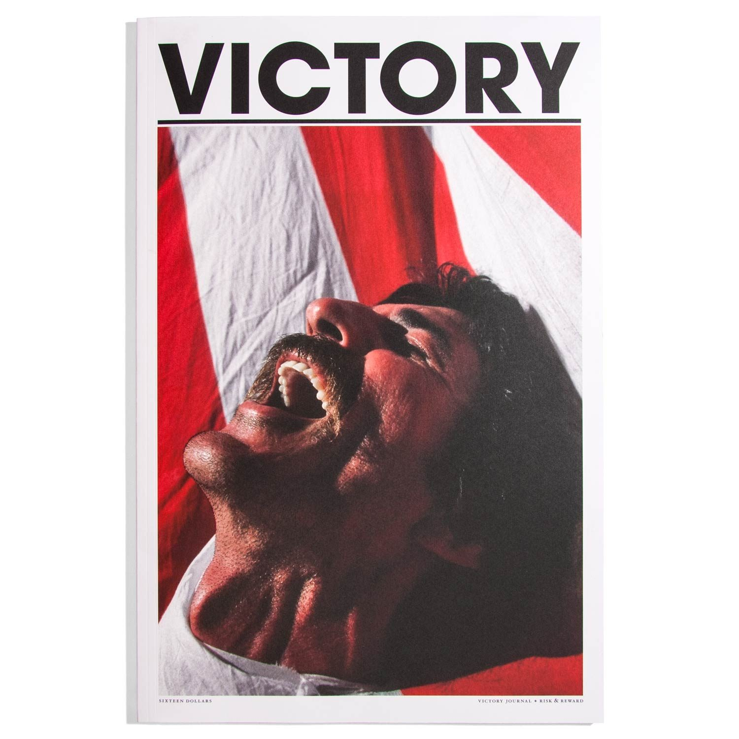 Victory Journal #16 2019 - Risk and Reward -