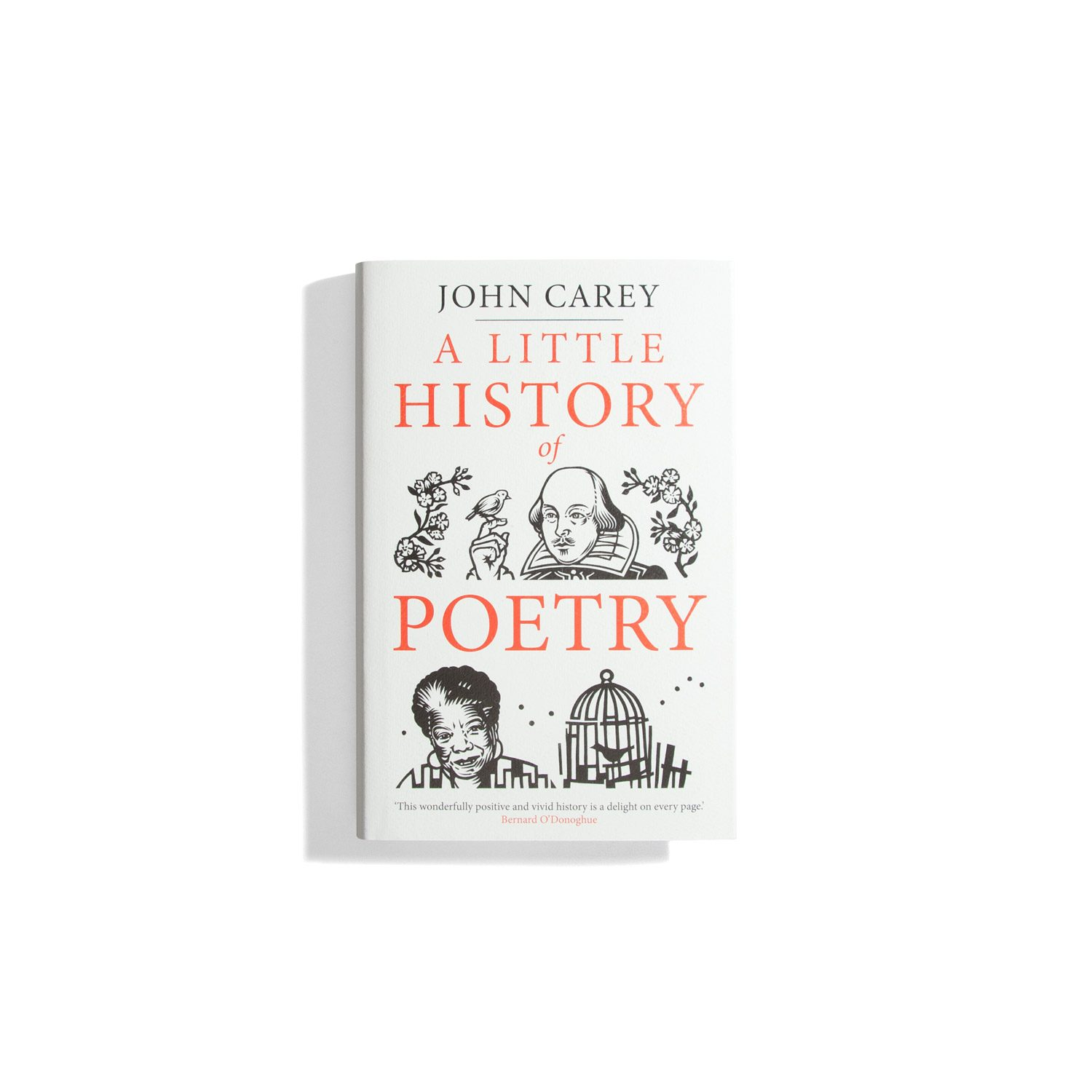 A Little History of Poetry - John Carey