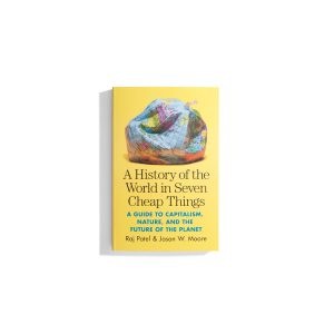 A History of the World in Seven Cheap Things - Raj Patel