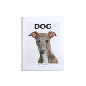 Dog #7 - The Italian Greyhound